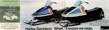 carros de golf y motos de nieve Harley Davidson
